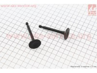 Клапан впускной, выпускной к-кт 2шт 168F [ТАТА]