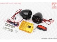 АУДИО-блок (МРЗ-USB/SD+FM-радио+пультДУ+сигнализация) + колонки 2шт (черные) [Китай]