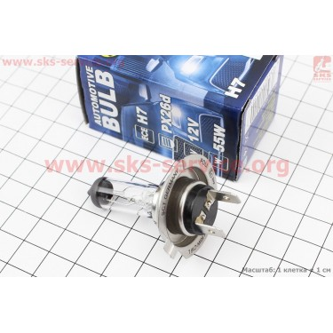 Лампа фары галоген H7 12V 55W PX26D Basic [SCT]
