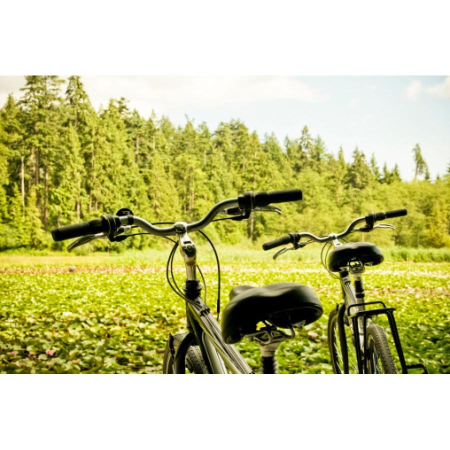 7 доказательств того, что велоспорт улучшает здоровье